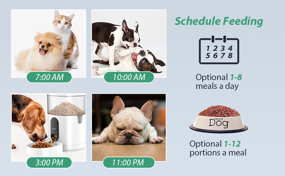 automatic schedule food feeding for pets