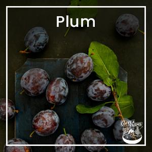 Tasting Note: Medium Roast Colombia : Plum
