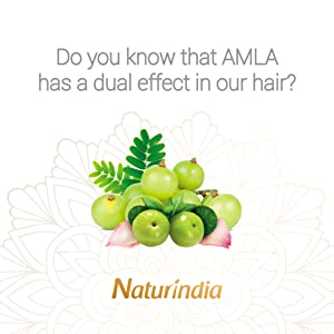 Ayurvedic shampoo for men