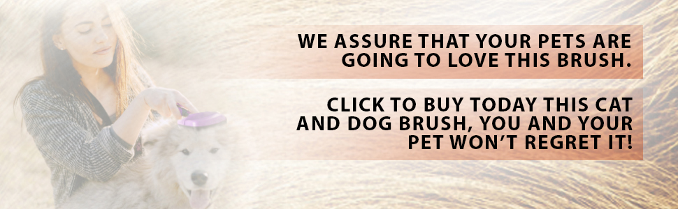 Pet Brush EBC #4