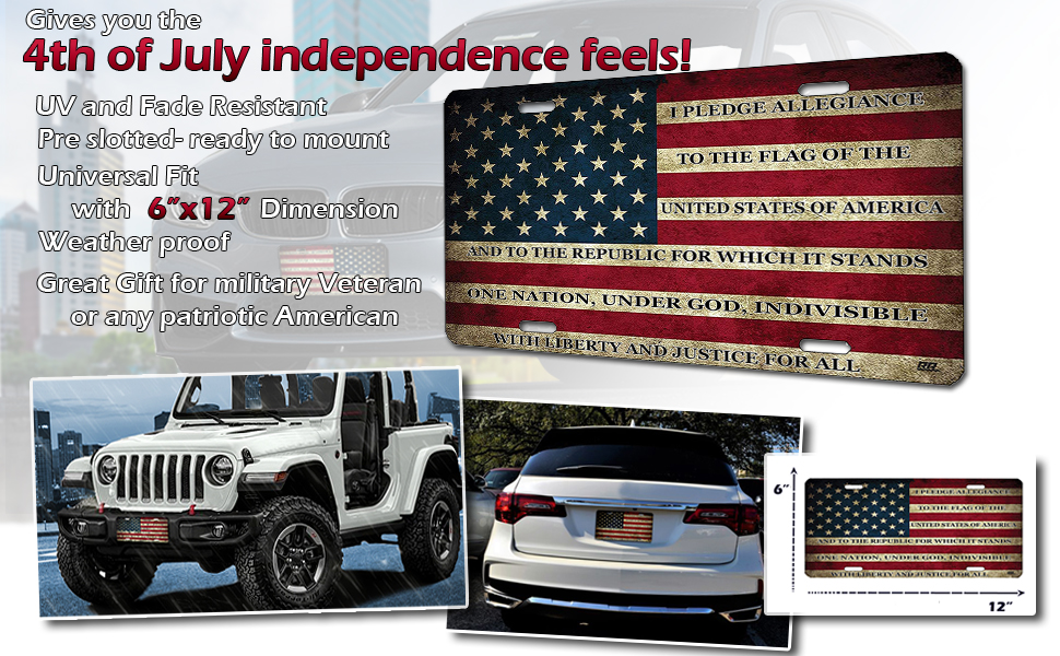 Zone Tech Tactical USA Flag License Auto Car Tag Plate with Thin Blue Line Premium Quality Thick Durable Embossed Monochrome Novelty Great American Pledge of Allegiance