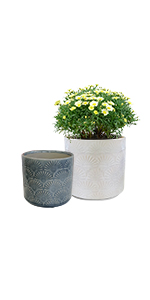 """GrowLED Ceramic Plant Pot 5.5"""" and 4.5"""", Shell Series, Crackle Patterned, White amp; Gray"""