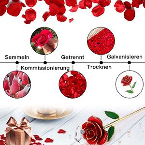 Echt Rose