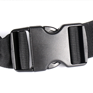 secure buckle