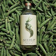 garden bottle & peas