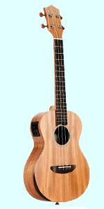 ukulele student soprano concert