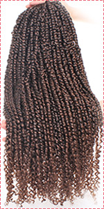 Pre-twisted Passion Twist Hair T30#
