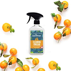 Aunt Fannies Vinegar all purpose kitchen bathroom sink tile cleaning spray fresh scent