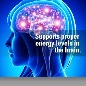 supports proper brain energy
