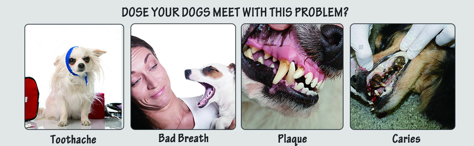 Doggy Teeth Cleaning Chews Toy