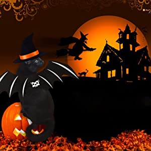 pet halloween cloak