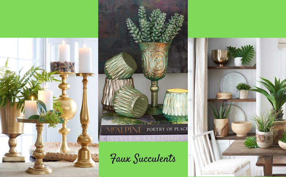 Succulents Leaves Picks for Parties Weddings Restaurants Spa Bouquets
