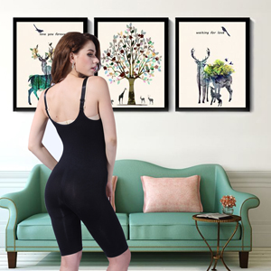 Full Body Shapewear for Women
