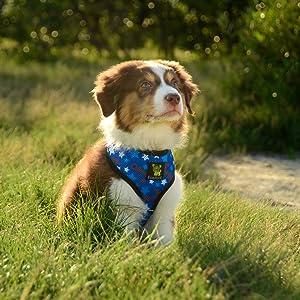 Med Max Comfort Dog Harness