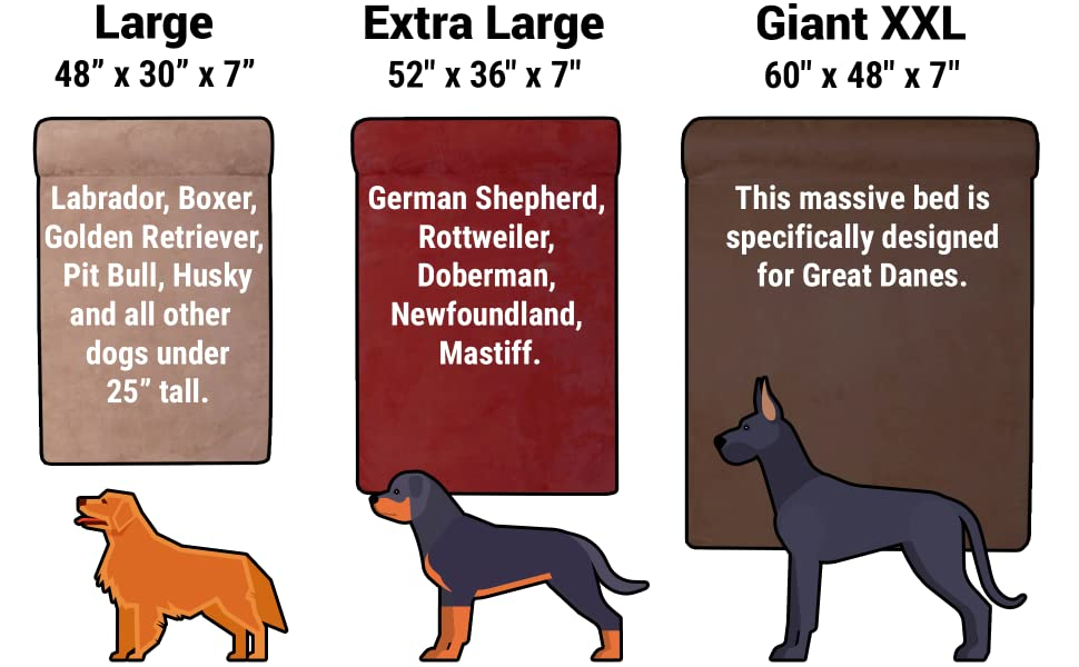 Sized for breeds including:  Great Danes, Saint Bernard, Mastiff, Labrador, Rottweiler, and Doberman
