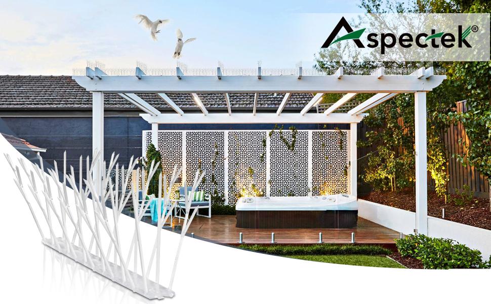 ASPECTEK Sistema Anti Pájaros - 10 Hileras de Púas Antipalomas Con Base de Policarbonato Para Control de Aves y Palomas (con Transparent Silicone Glue): Amazon.es: Jardín