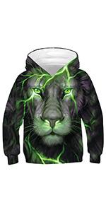 boys lion sweatshirts