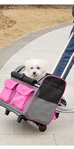dog rolling carrier