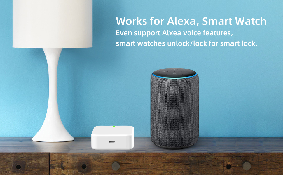 Alexa smart lock hub