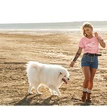Canine Pet Rescue