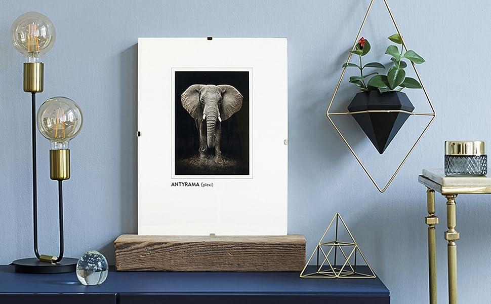 postergaleria ramki obrazy złote zdjęcia plakaty