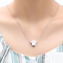 dog ashes necklace