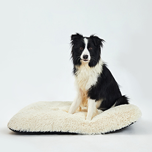 dog beds for large dogs kong dog bed pads for crates dog beds crate