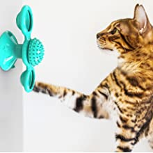 Cat fidget spinner windmill stuck on the wall and cat is playing with interactive toy