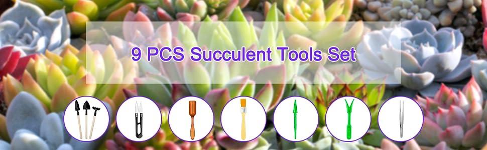 succulent tools set
