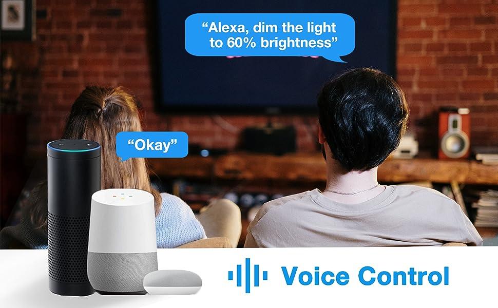 voice contral
