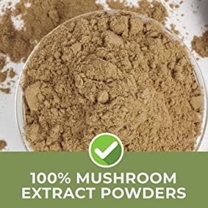 pure mushroom extract in every serving, no fillers or grains for maximum absorption