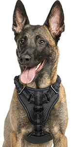 Dog Harness No Pull, Adjustable Dog Walking Harness with 2 Leash Clips, Comfort Dog Vest Harness