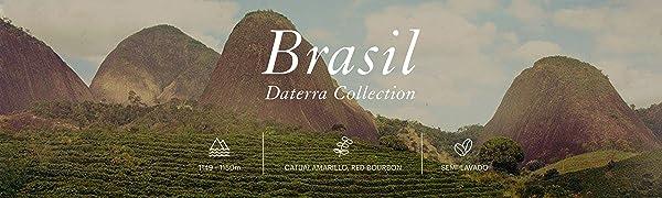 Cafés AMADOR - Café en GRANO Natural Arábica - BRASIL DATERRA ...