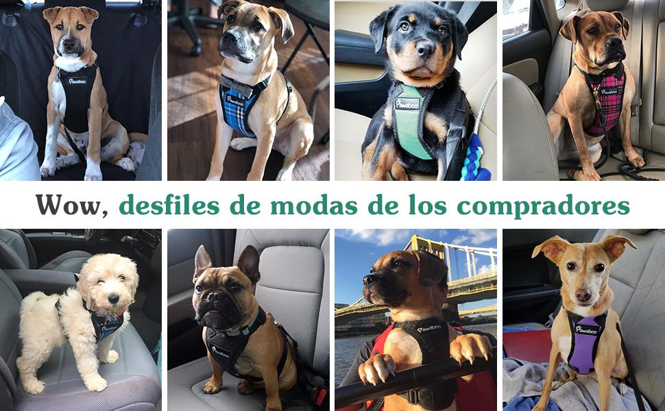 Pawaboo Cinturón de Arnés de Chaleco de Seguridad para Perros ...
