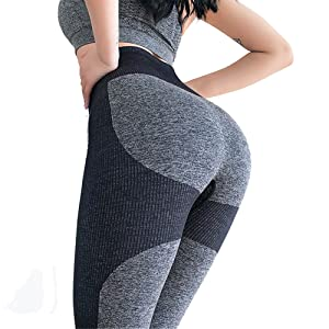 gym shark seamless leggings