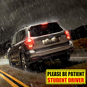 student driver signs for car