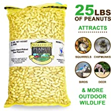 Wakefield peanuts are a great food source for birds. They provide essential proteins and fatty acids