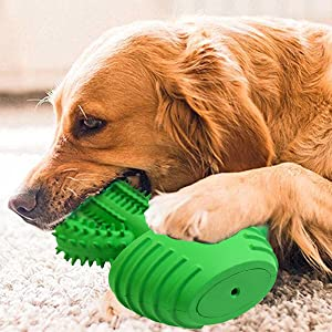 Natural Rubber Dog Toothbrush