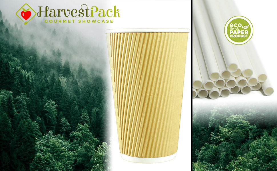 trees, forest, paper, cup, straw