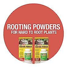Rooting Hormones Powder