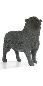 black sheep, sheep, farm animal, farm collection