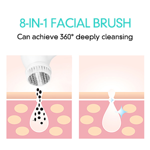 Facial brush2
