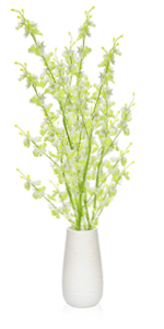 yellow-white flowers with vase