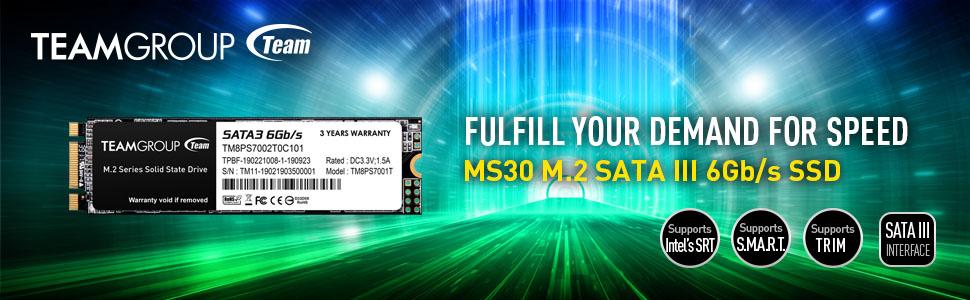 TEAMGROUP MS30 M.2 SATA SSD