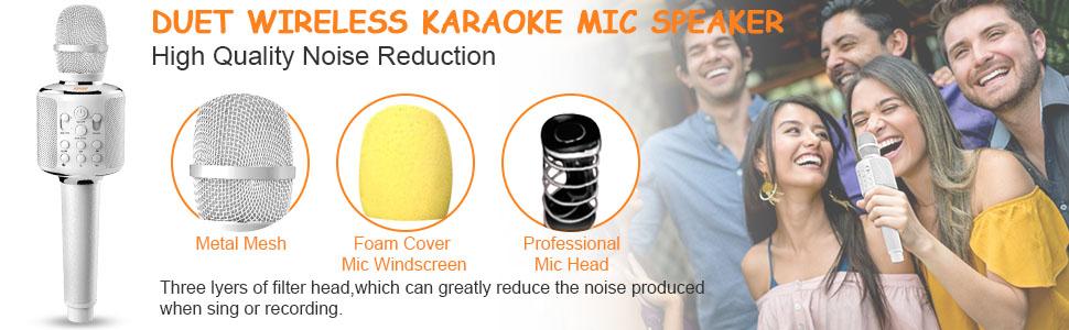 Duet Karaoke Microphone