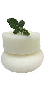 white shampoo & conditioner bars, sprig of peppermint