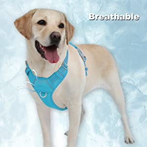 gentle leader easy walk harness reflective vest shepards hooks for outdoor dog seat belt