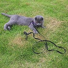 CAT LEASH,SMALL LEASH,black leash