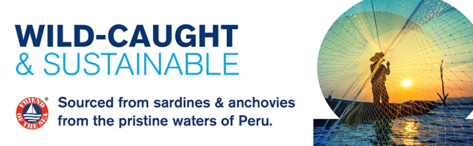 wild caught fish sardines anchovies Peru sustainable sustainability FOS friend of the sea