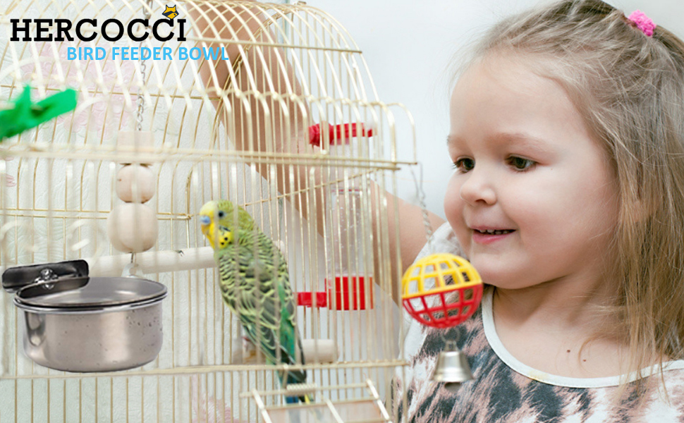 bird feeder bowl